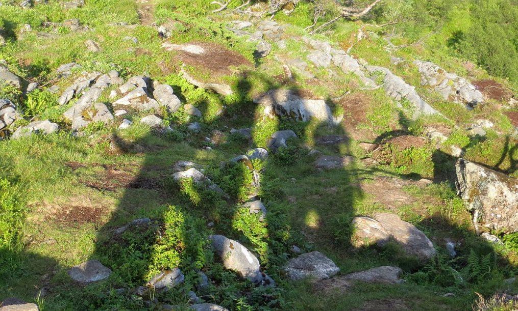 Nos ombres